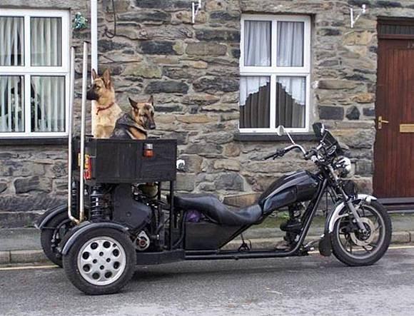 Необычные мотоциклы. Трицикл с богажником